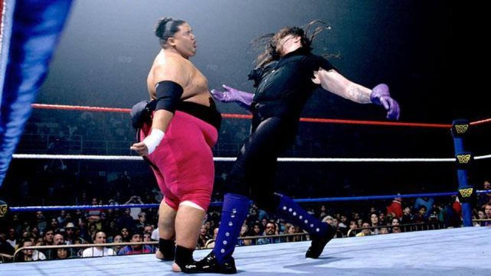 undertaker yokozuna survivor series 1994
