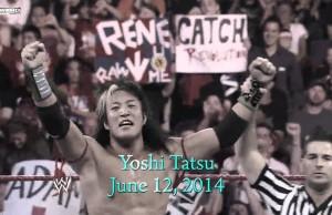 yoshi-tatsu-fired