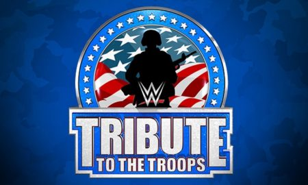 tribute to the troops 2015
