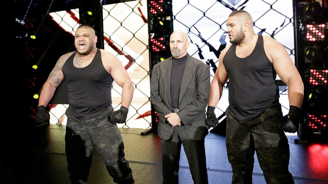 paul ellering authors of pain