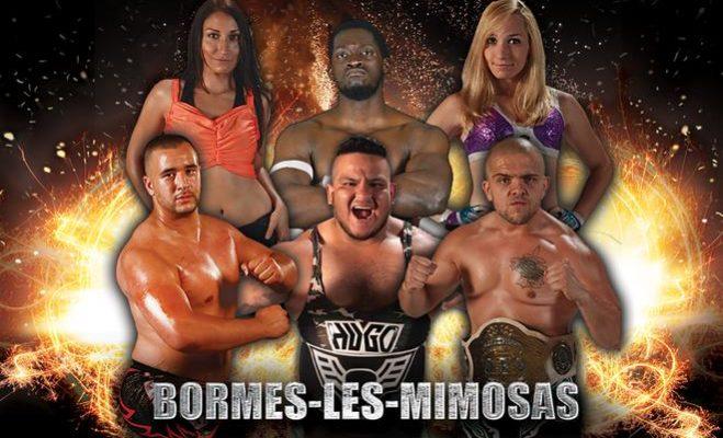 show-bormes-les-mimosas