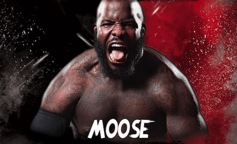 moose luchamania